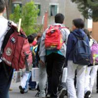 """Scuola, il Pd di Modena: """"Mandiamo i bulli a fare lavori socialmente utili"""""""