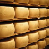 """Furti triplicati e imitazioni selvagge: """"Il Parmigiano è il prodotto italiano più rubato"""""""