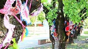 """Urban knitting: la maglia """"resistente""""  delle donne nel parco di Ozzano"""