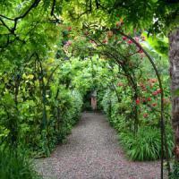 Dietro il portone c'è un tesoro: alla scoperta dei giardini segreti di Bologna