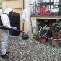 Febbre del Nilo, nel Bolognese i primi due casi italiani del 2016