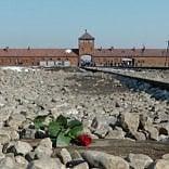 Trenitalia non dà il convoglio si farà in pullman  il viaggio ad Auschwitz