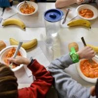Bologna, novità in mensa: ai bimbi prima il secondo per far mangiare più verdura
