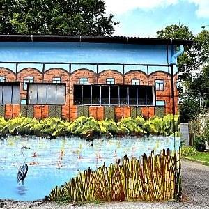 Ferrara, un percorso alla scoperta della Street Art