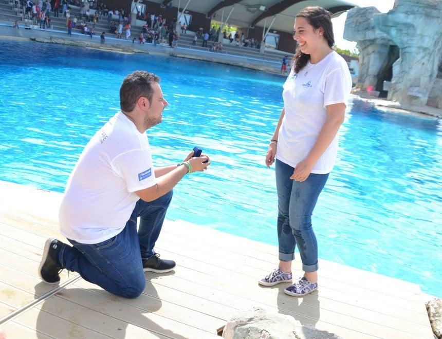 Riccione, Marta e Simone promessi sposi davanti ai delfini di Oltremare