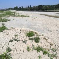 Allarme siccità in Emilia. Il Po in secca