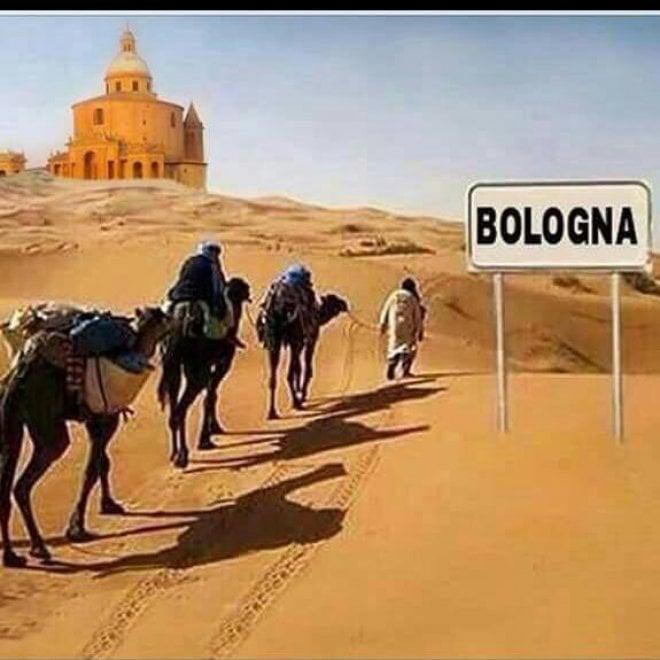 La piscina in piazza Maggiore e il deserto sotto le Torri: ironia social sul caldo a Bologna