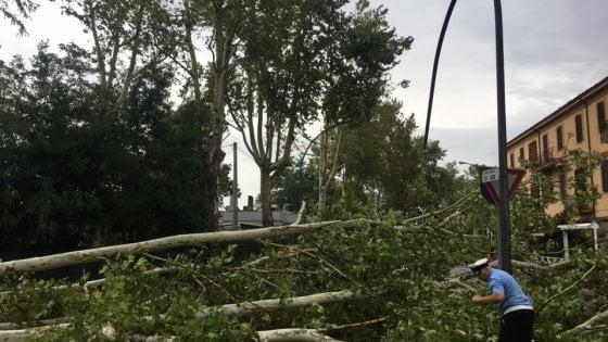 Maltempo, gravi danni in Romagna per pioggia e vento