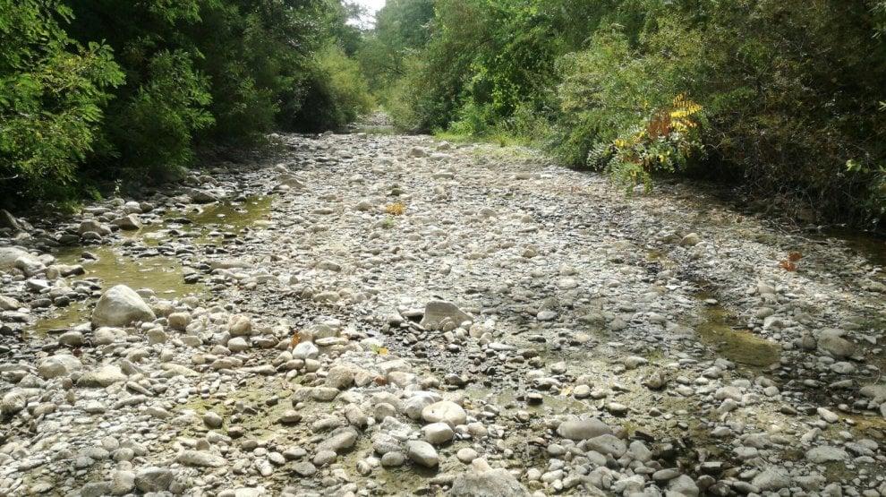 Siccità in Emilia-Romagna: l'acqua non c'è più, i fiumi sono nature morte