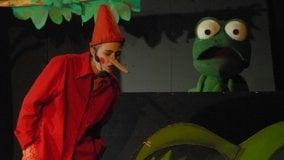 Pinocchio al Duse con Fantateatro   Laboratori col teatro Ridotto   Le attività per i piccoli in settimana