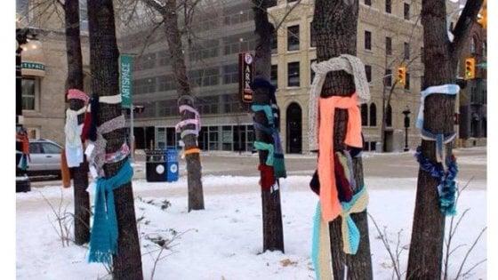 """Sugli alberi di Bologna arriva la sciarpa sospesa: """"Così i senzatetto potranno scaldarsi in inverno"""""""
