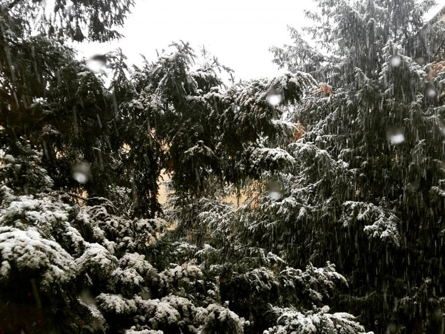 Neve a Bologna e in regione, le foto dei lettori