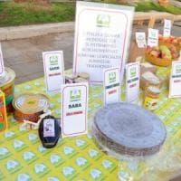 L'Emilia-Romagna regina a tavola: 388 prodotti tradizionali da tutelare
