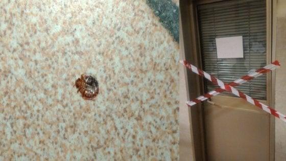 Bologna, chiusa per zecche la sala della polizia ferroviaria in stazione centrale