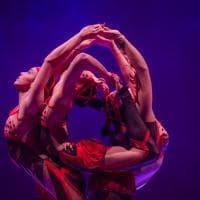 Le Cirque porta a Bologna i migliori performer del mondo