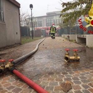 Rimini, incendio in casa: muoiono sei cuccioli di cane