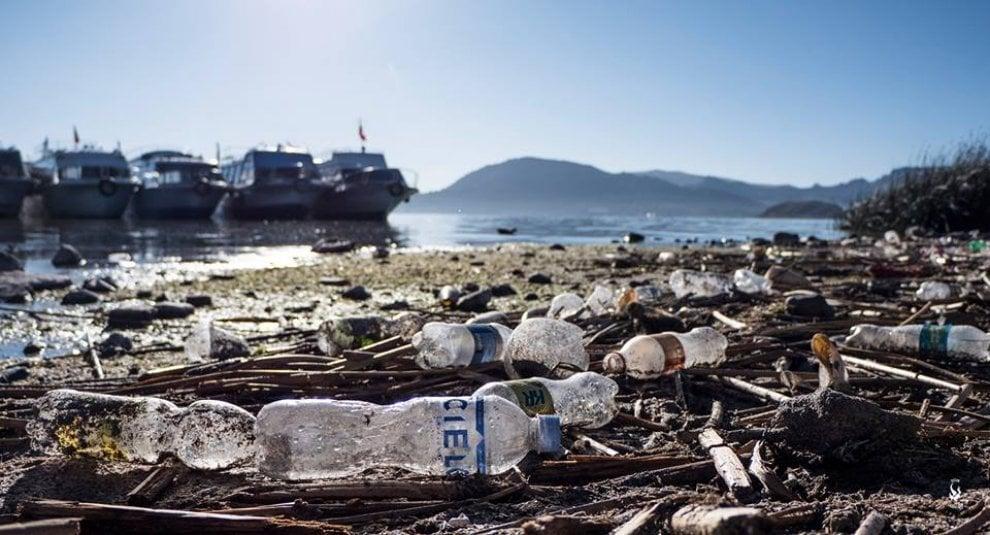 """Ocean traceless, cinque mesi in bicicletta attraverso il Sudamerica: """"Basta plastica"""""""