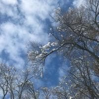 La magia della neve in Appennino