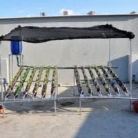 L'insalata che cresce in bottiglia: orti urbani nel campo profughi di Rafah