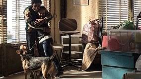 """Oggi al cinema: la programmazione completa a Bologna e provincia  """"Dogman"""": standing ovation  a Cannes per il nuovo film di Matteo Garrone"""