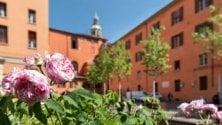 Aiuole di rose variegate  nel cortile del Pozzo