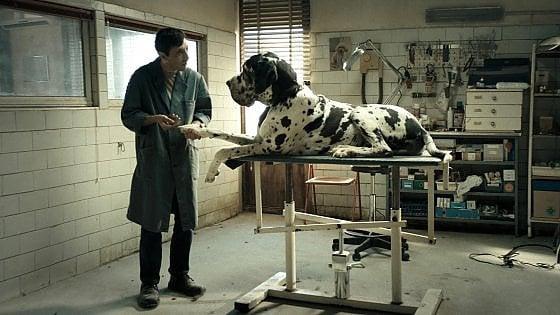 """""""Finalmente lunedì!"""": al cinema con Repubblica Bologna, c'è """"Dogman"""""""