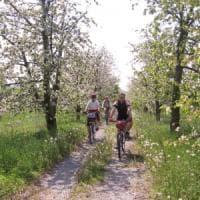 Biker, runner e maratoneti: il wellness-week in Romagna