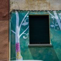 Bologna, alberi spuntano sui muri della Bolognina