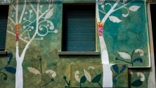 Spuntano alberi  sui muri in Bolognina