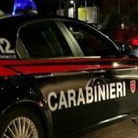 Rimini, in un allevamento abusivo animali in pessime condizioni, droga e