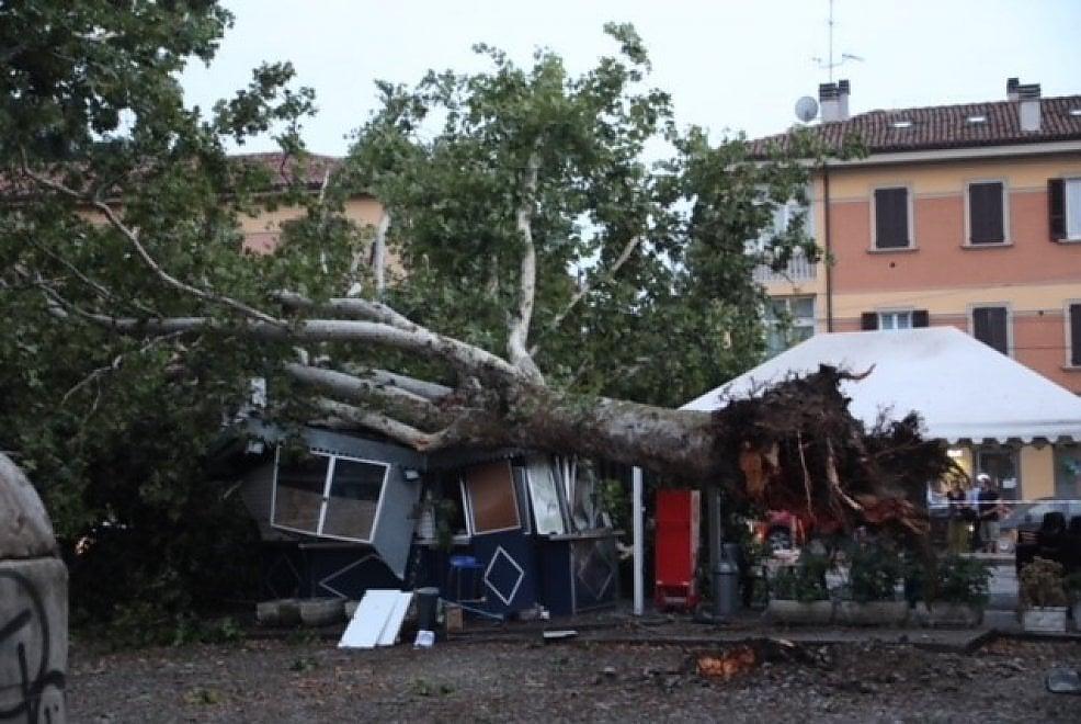 Nubifragio in città, albero travolge chioschetto a Massarenti