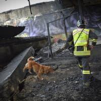 Esplosione a Bologna, quegli angeli sul luogo del disastro