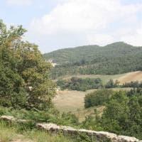 Grizzana, viaggio a casa Morandi: 70 sfumature di verde aspettando il pomario