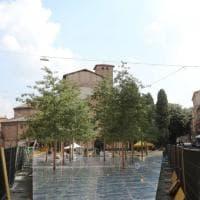 Ecco il bosco di Cucinella in piazza Santo Stefano