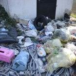 Repubblica-Legambiente ripuliscono il Navile dalla plastica