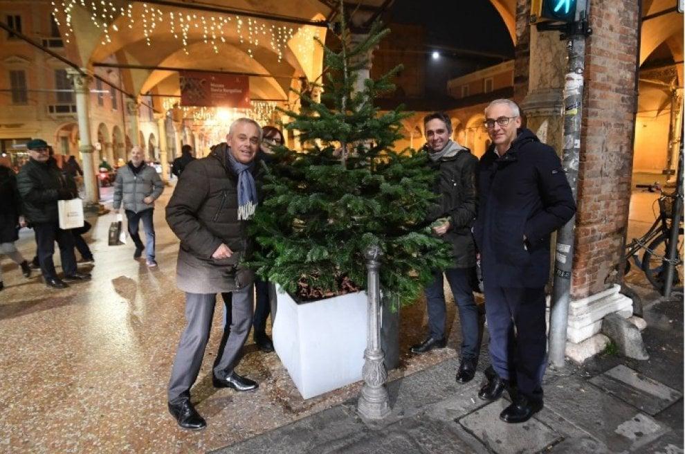 Bologna, un nuovo albero di Natale per la Fiera di Santa Lucia dopo l'atto vandalico