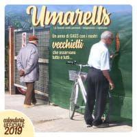 Un anno con gli Umarells