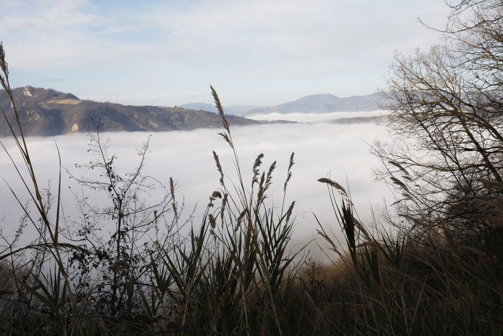 Colli come scogliere in un mare di nebbia: lo spettacolo fuori Bologna