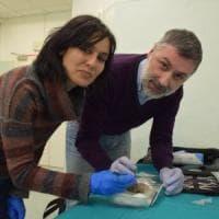 Archeologia in ospedale: Forlì, ai raggi x la pagnotta di 2000 anni fa
