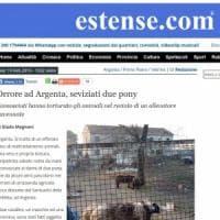 Due pony seviziati da estranei in un recinto nel Ferrarese