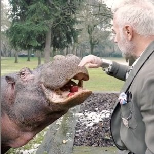 Gianluca Vacchi e l'ippopotamo in giardino, arrivano i carabinieri forestali