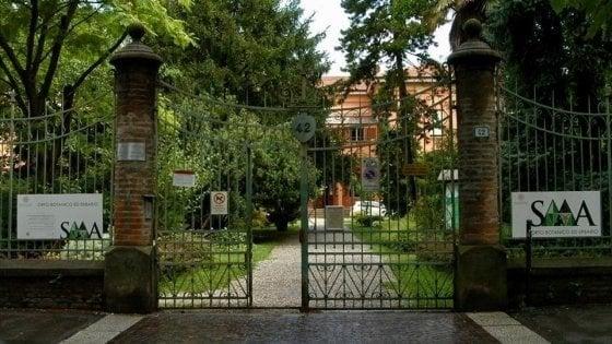 """Bologna, Italia Nostra contro i lavori di rifacimento dell'orto Botanico: """"Uno scempio"""""""