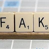 Ateneo di Bologna, il manifesto dei professori contro le false notizie