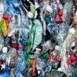 Al bando la plastica nei campus dell'università di Bologna
