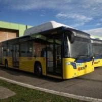 Modena, l'autista non le fa il biglietto: ragazza disabile multata sul bus
