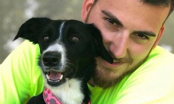 Bologna trovata in autostrada jo diventa campionessa for Razza del cane di tequila e bonetti