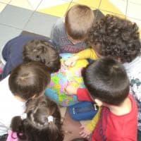 Bologna, quella scuola che salta i muri del razzismo