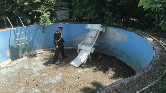 Bologna, la volpe cade nella piscina vuota. Salvata dai carabinieri