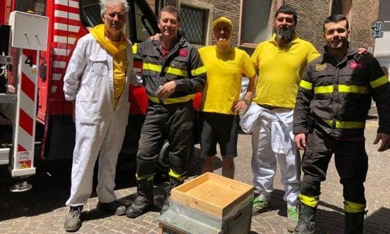 Sciame d'api in piazza Maggiore a Bologna