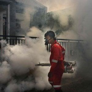 Un caso di Dengue a Bologna